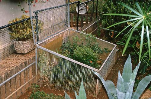 Gestione in cattivit dei rettili for Tartarughiera per tartarughe grandi